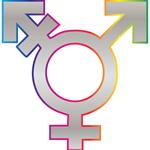 genderlines